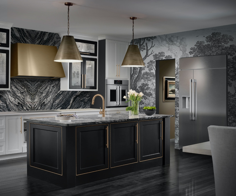 stylish kitchen with new luxury kitchen appliances
